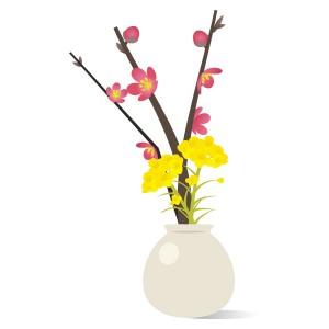 梅の花と菜の花のコンビネーション