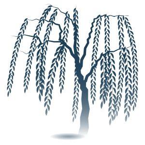 木柳の木 フリーイラスト素材 趣味で作ったイラストを配るサイト