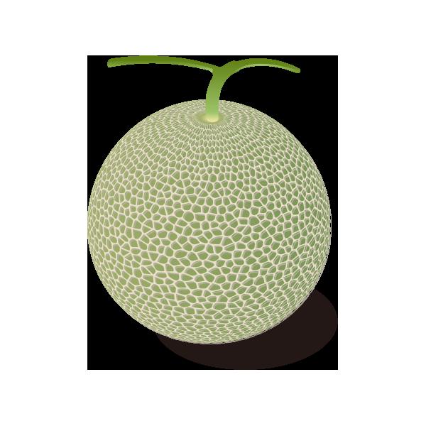 果物メロン フリーイラスト素材 趣味で作ったイラストを配るサイト